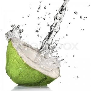 Coconut Water: A New Alzheimer's Disease Treatment?