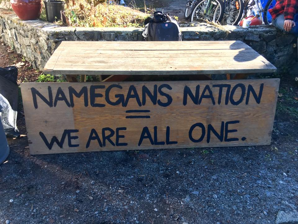 Namegans on the Run by Daniel Thompson