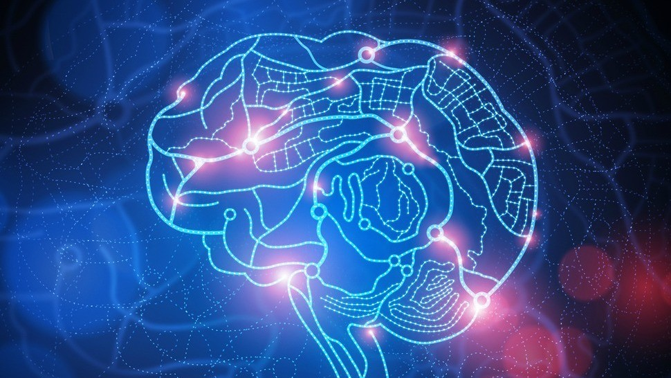 Are You Ready To Have Elon Musk's Artificial Intelligence Chip, Neuralink, Inserted Into Your Brain? Trials Start 2020 For The 'Robotization' Of Humankind