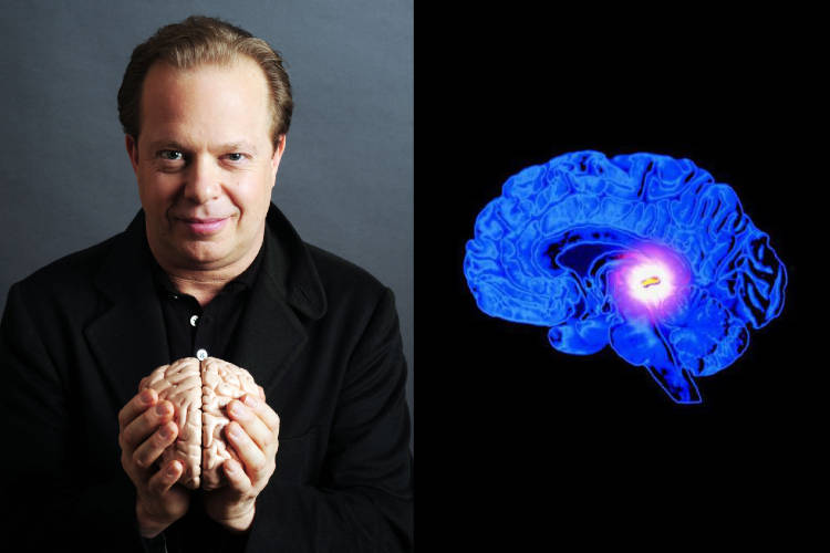 DR. JOE DISPENZA DEMYSTIFIES THE SCIENCE OF PINEAL GLAND ACTIVATION