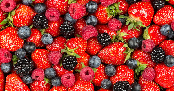 Berries Drive Brain Health, Keep Aging at Bay by GreenMedInfo