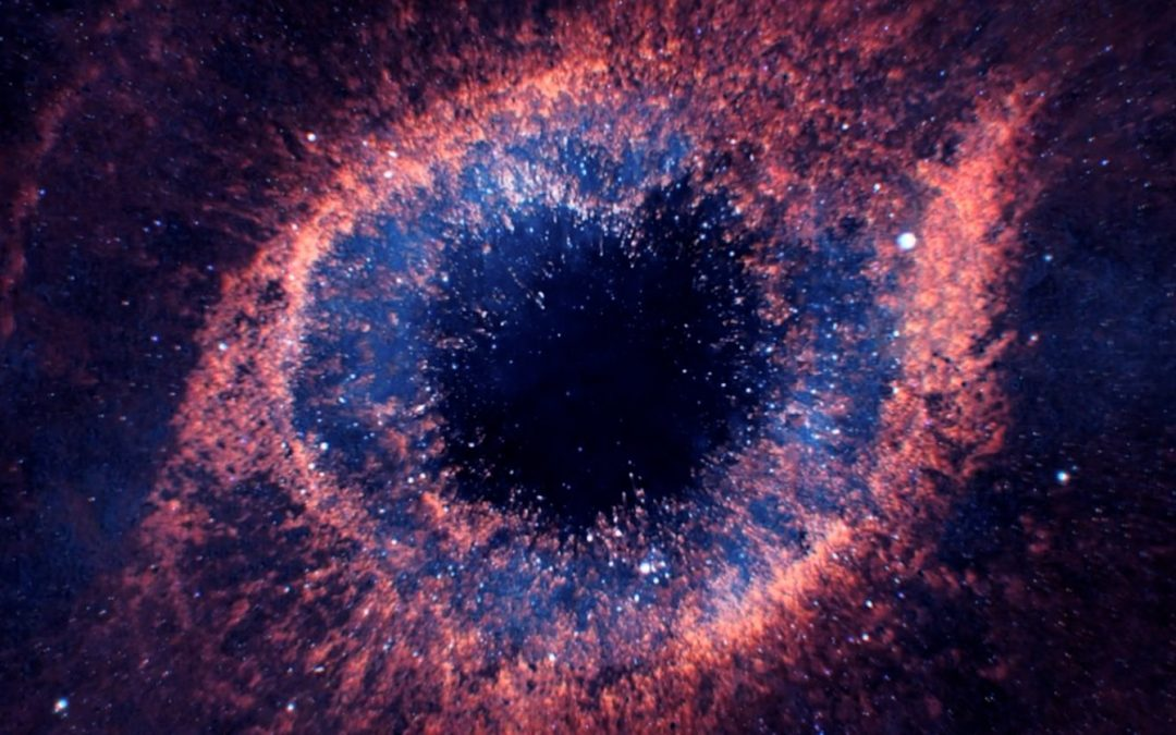 Is The Universe A Living Organism?  By Adrian David Nelson