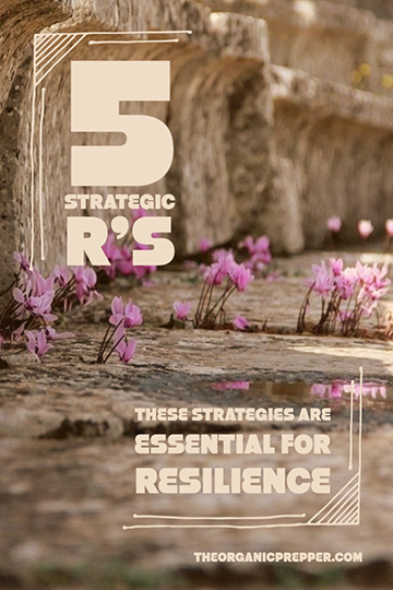 The 5 R's: These Strategies Are Essential for Resilience