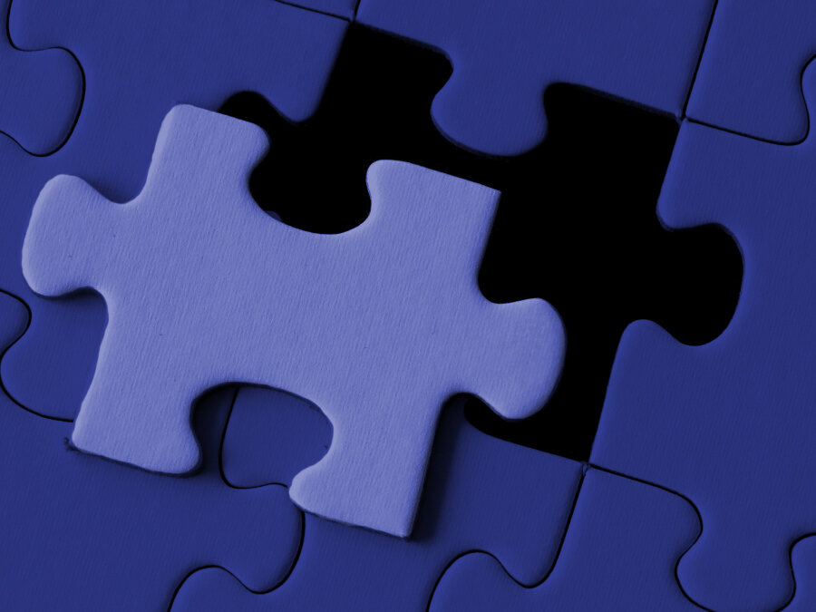 Solving the Puzzle of Ourselves