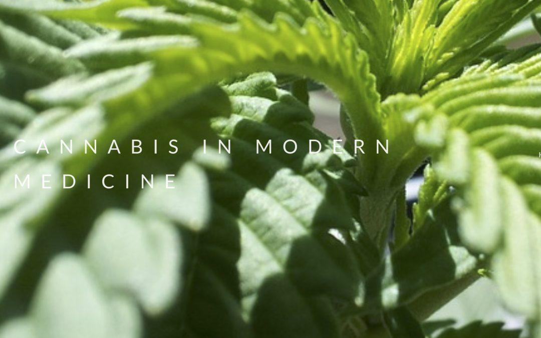 Cannabis in Modern Medicine
