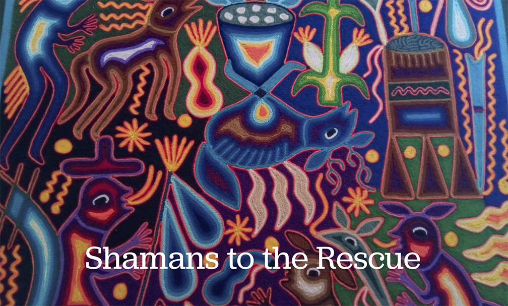 Shamans to the Rescue  By Paul Levy