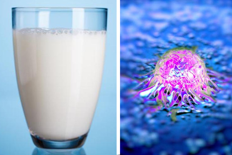 TOP SCIENTIST EXPOSES THE REAL DANGERS OF MILK: IT 'TURNS ON CANCER' AND 'LEACHES CALCIUM FROM YOUR BONES'