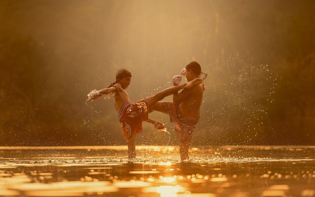 The Spiritual Dimensions of the Martial Arts