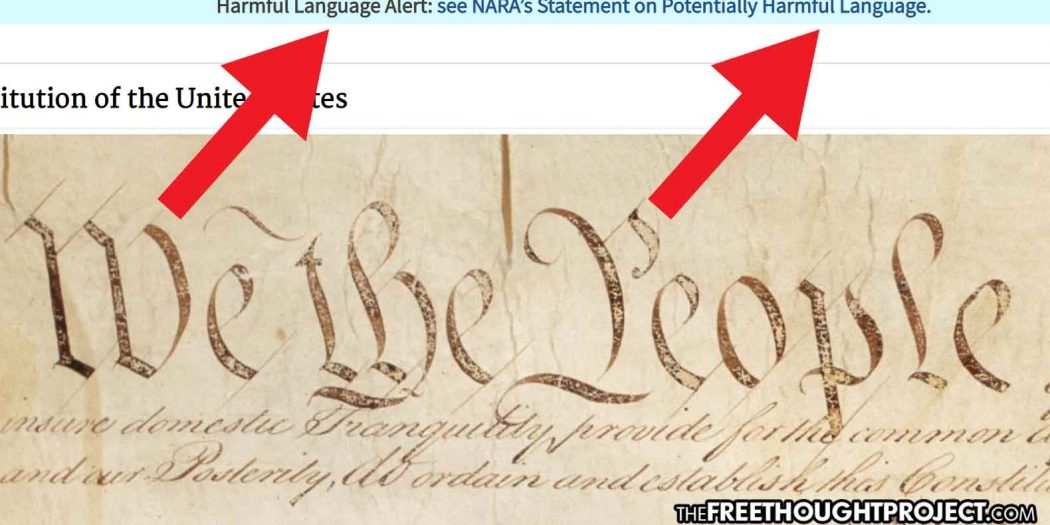 Peak 2021 — US Gov't Labels the Constitution, Bill of Rights as 'Potentially Harmful Content'